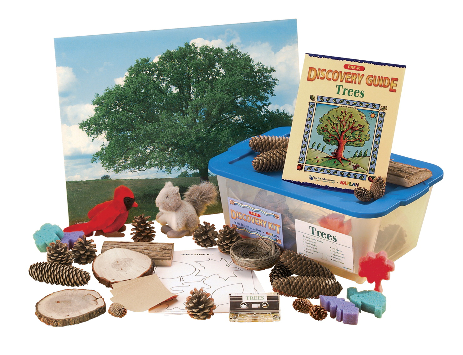Delta Discovery Trees Kit, Pre-K