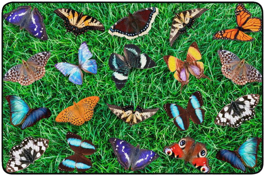 Childcraft Photo-Fun Butterfly Seating Carpet, 6 x 9 Feet, Rectangle