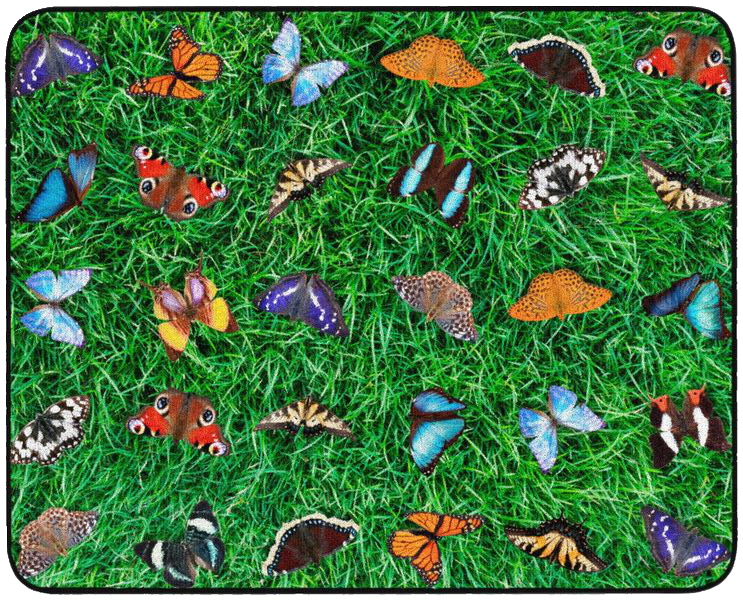 Childcraft Photo-Fun Butterfly Seating Carpet, 10 Feet 6 Inches x 13 Feet 2 Inches, Rectangle