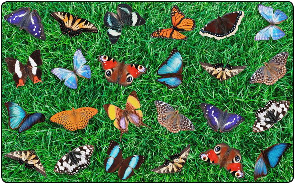 Childcraft Photo-Fun Butterfly Seating Carpet, 8 x 12 Feet, Rectangle