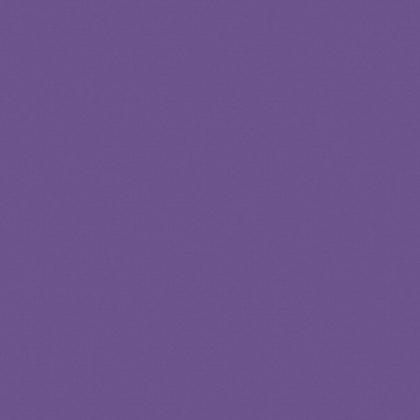 Tru-Ray Sulphite Construction Paper, 9 x 12 Inches, Purple, 50 Sheets