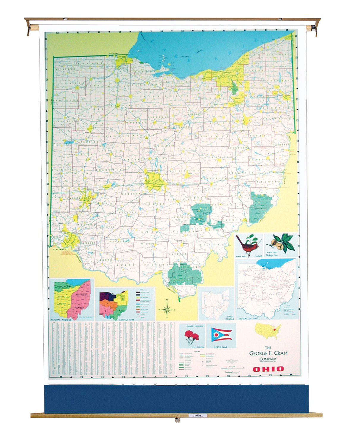 Details about Nystrom Ohio Pull Down Roller Classroom Map, 51 x 68 Inches