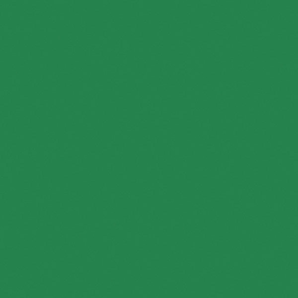 Tru-Ray Sulphite Construction Paper, 12 x 18 Inches, Holiday Green, 50 Sheets