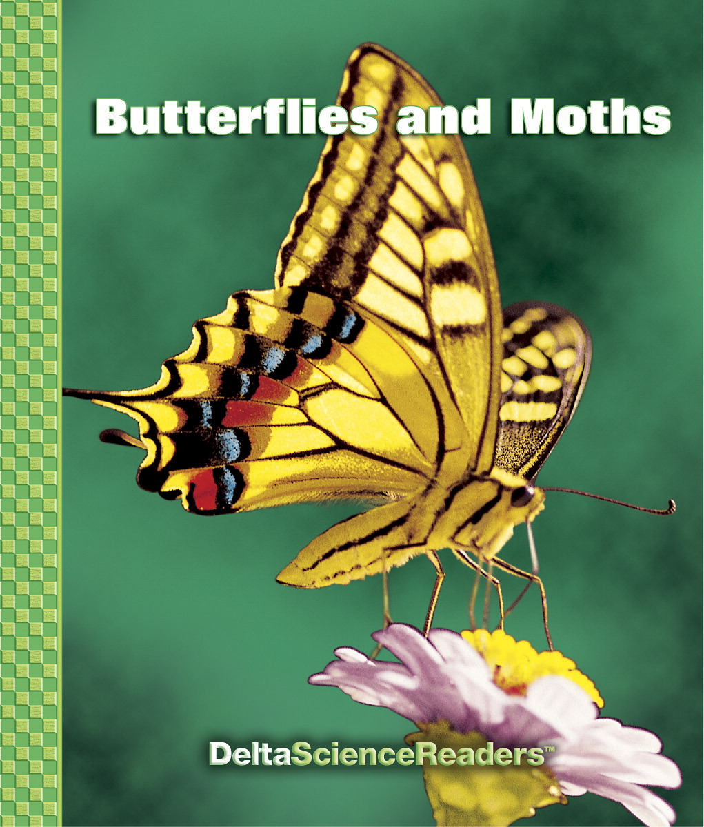 Delta Science Readers Butterflies and Moths Book - Pack of 8