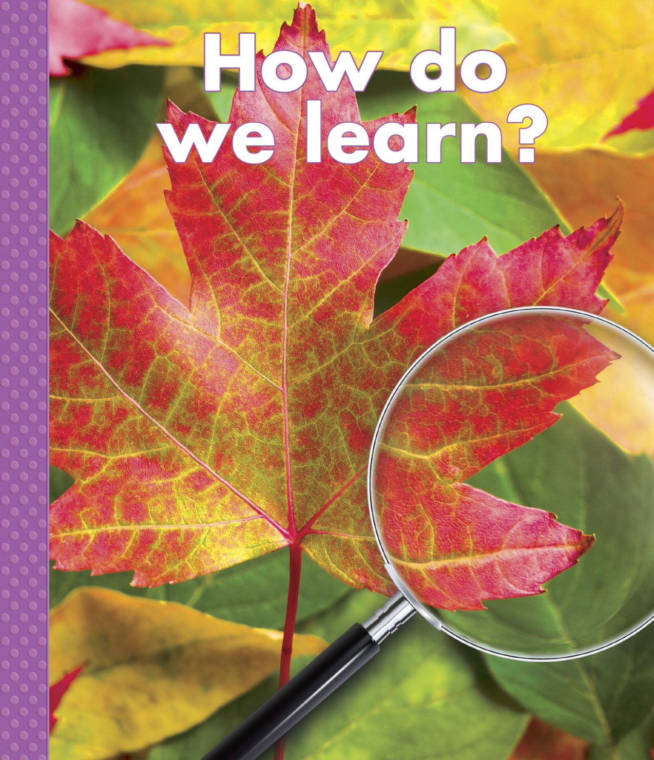 Delta Science Readers How do We Learn? Paperback Big Book, Grade K - 8, 18-3/4 in H X 16 in W, 16 Pages