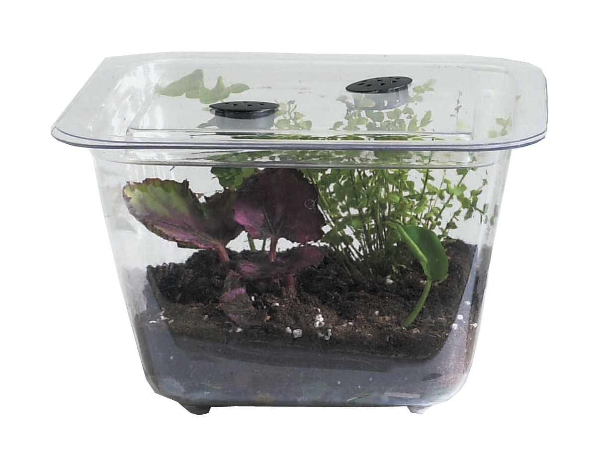 Student aquarium terrarium frey scientific cpo science for Fish tank terrarium