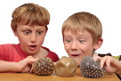 Abilitations Integrations Textured Sensory MudBall, Pack of 3