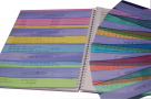 School Specialty Reading Ruler Set, Assorted Colors, Set of 10