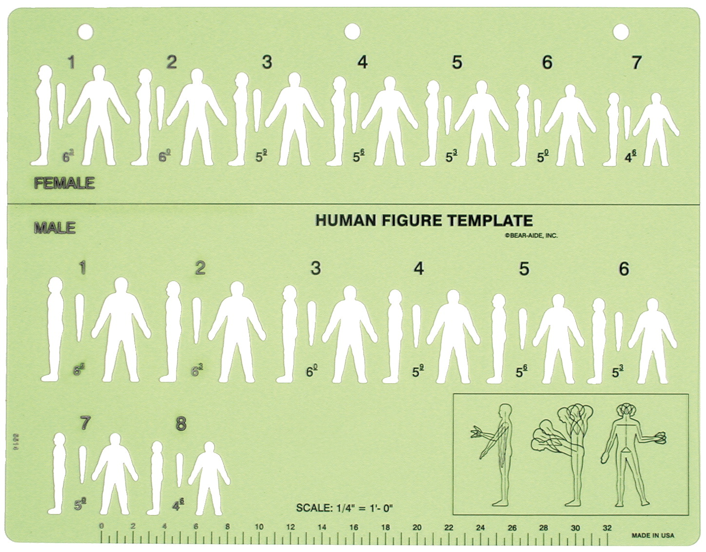 Crime Scene Sketch Template - FREY SCIENTIFIC & CPO SCIENCE