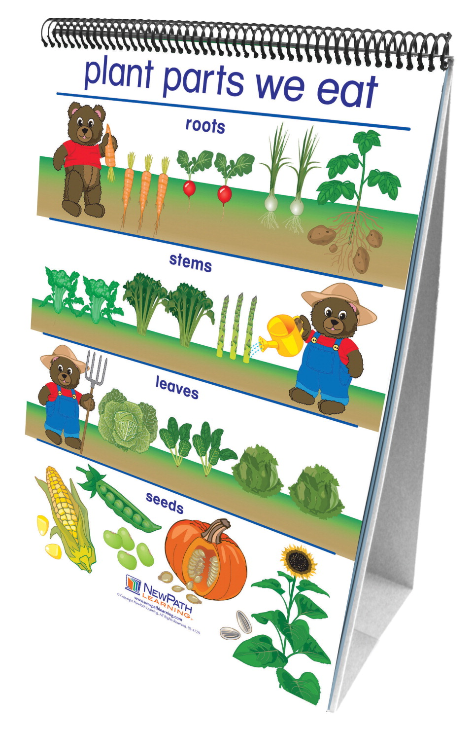 NewPath Learning Early Childhood All About Plants Double Sided Laminated Flip Chart, 12 L x 18 W in