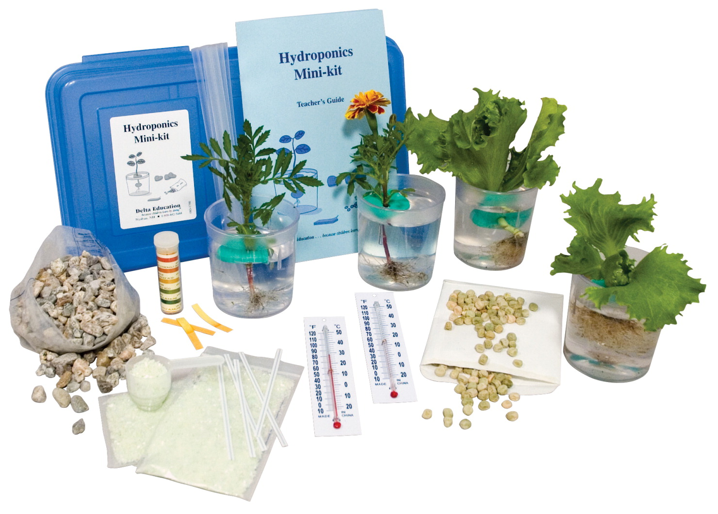 Delta Education Hydroponics Kit