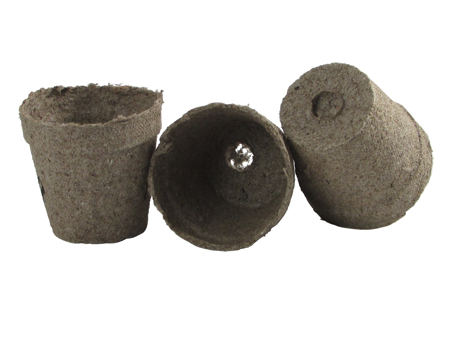 Delta Education Peat Pots - 2.25 inches - Pack of 60