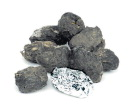 Barn Owl Pellets - Small - Pack of 20