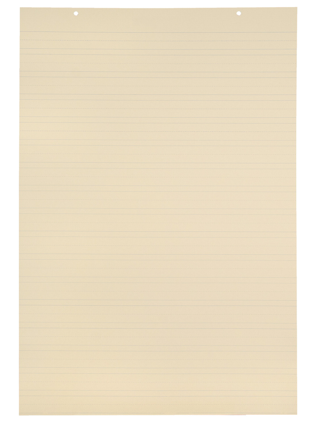 School Smart Jumbo Manila Tag Ruled Chart Paper 36 X 24 Inches Pack Of 100 Specialty Marketplace