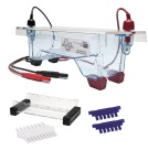 Edvotek Single-Gel M12 Minigel Electrophoresis Apparatus