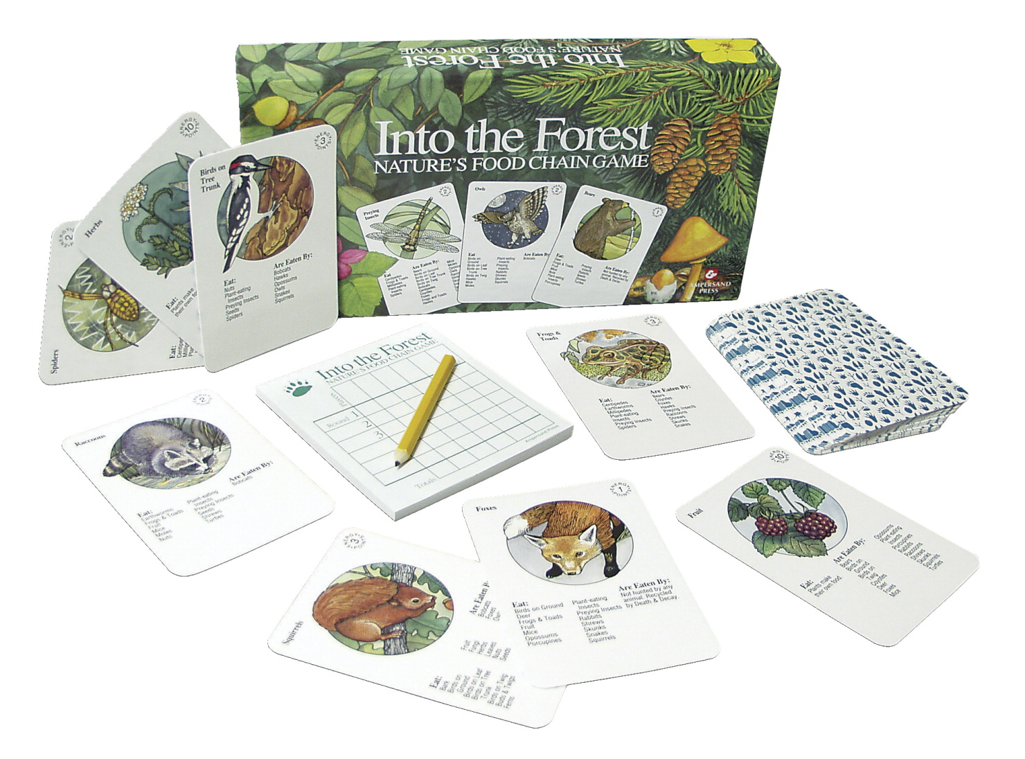 Ampersand Press Into the Forest Food Chain Game