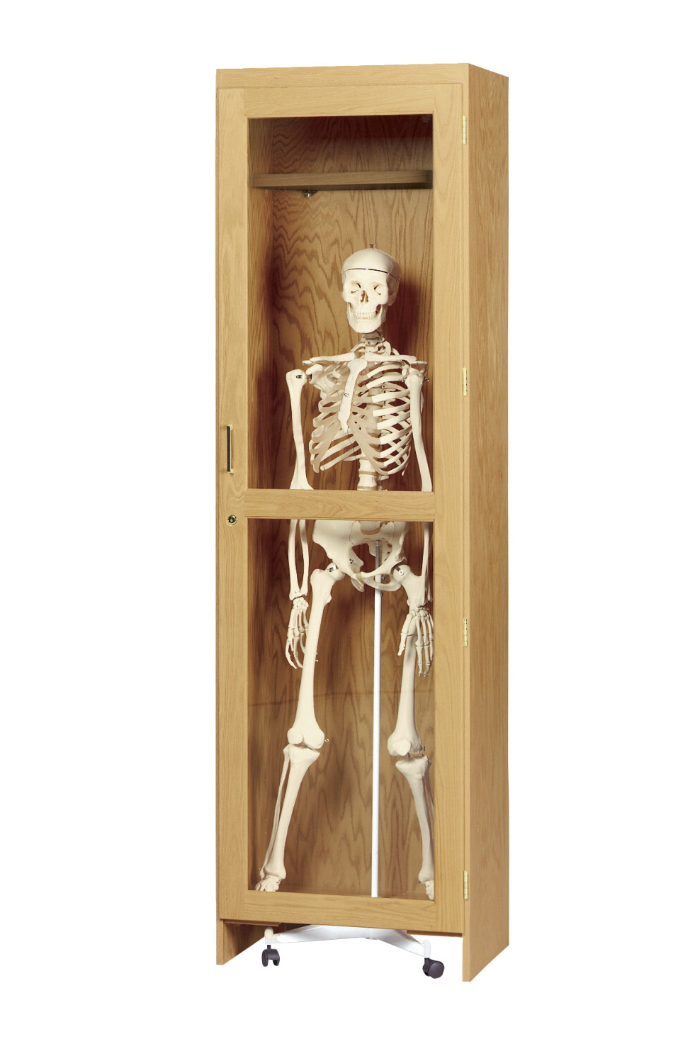Diversified Woodcrafts Rolling Model Skeleton Cabinet, 24 x 22 x 84 Inches, Oak