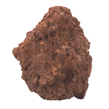 Scott Resources 6 Piece Economy Sedimentary Rock Collection Bag American Educational Products 1399920