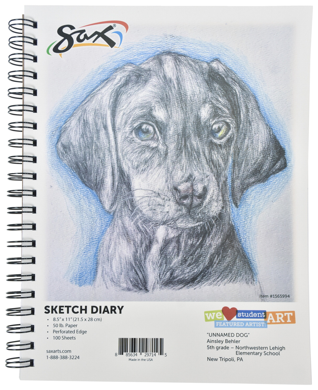 Sax Sketch Diary, 50 lbs, 8-1/2 x 11 Inches, 100 Sheets
